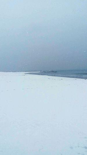 New Hampshire Beach Life Snow