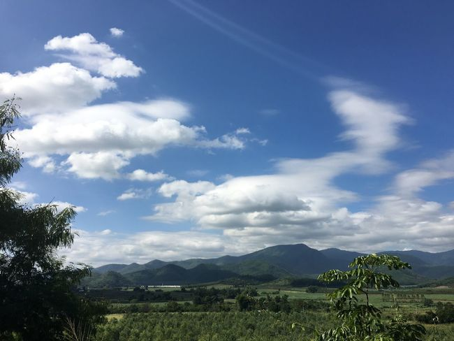 Agriculture Beauty In Nature Cloud - Sky Day Landscape Mountain Mountain Range Nature No People Outdoors Scenics Sky Tranquil Scene Tranquility Tree