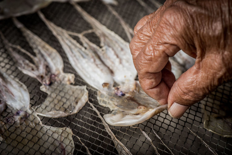 Cropped image of hand preparing seafood