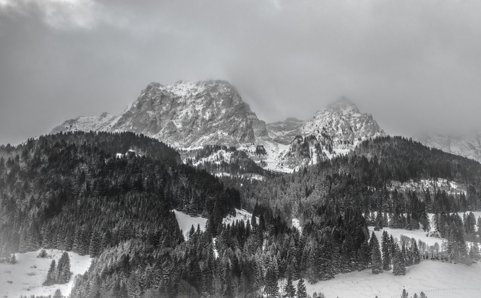 Beauty In Nature Bnw Bnw_collection Cold Temperature Day Forest From Where I Stand Gstaad Landscape Mountain Mountain Range Nature No People Outdoors Scenics Sky Snow Snowcapped Mountain Switzerland Tadda Community Tree