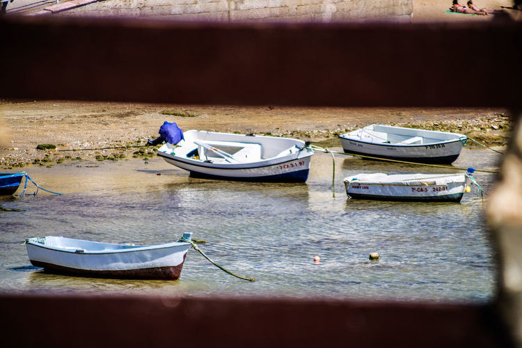 Barcos Mar