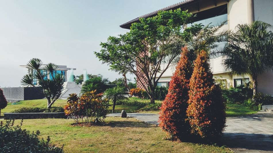 Life is just walk in the park. Batu Malang Park VSCO