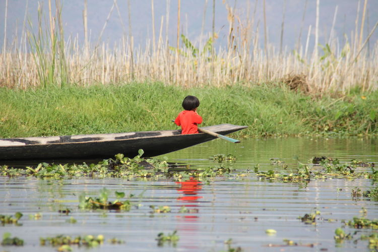 Lake Inle Beauty In Nature Day Floating On Water Grass Growth Lake Leisure Activity Nature Nautical Vessel Oar One Person Outdoors Plant Real People Reflection Rowboat Transportation Water
