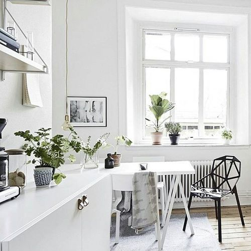 I love the idea of adding little bits of Green to a white space. So fresh! Bringingnatureinside image and Interior Styling @styledbyemmahos Whitespaces make me ☺ Home Decorating Scandinaviandesign Kitchens Indoor Greenery Plants