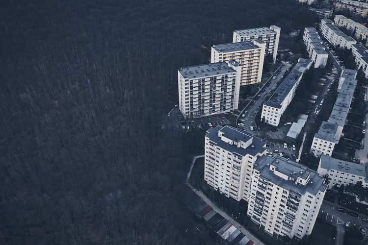 Aerial view of buildings by forest