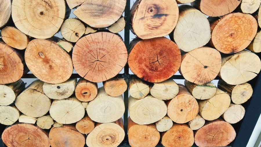 Full frame shot of firewood on shelf