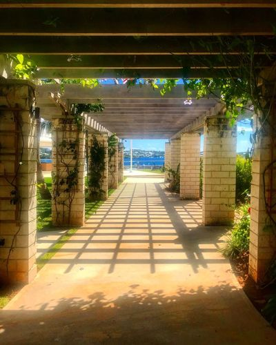 Architecture Built Structure The Way Forward Direction Building Nature Sunlight Connection Architectural Column Illuminated Lighting Equipment Park Building Exterior Gate Shadow No People Footpath Outdoors