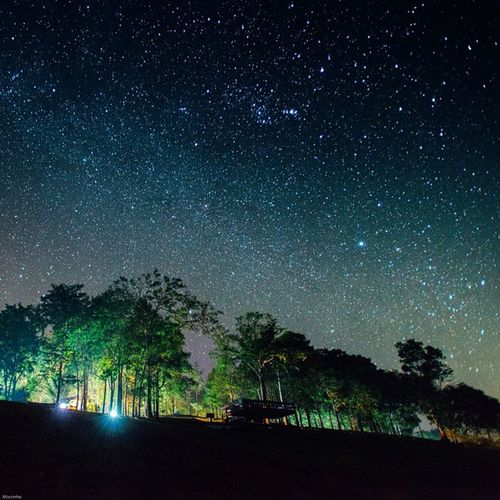Vscocam Star Milkyway Igersthailand Sublimewilderness Amzthld Igersth Photo_forest_gold Instagood Instadaily Earthimage Warrenjc Teamtraveler Myfeelgoodplace Newwallbest Outersphere Thenaturalearth Theglobewonderer Oakstallion Ourplanetdaily Ventureout