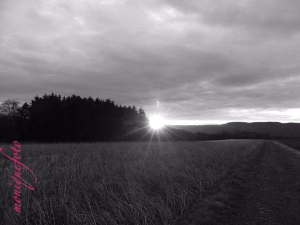 Sonnenaufgang am Rosenmontag. 💕💗 Monique52 Himmel Sonnenaufgang Hochrhein Südschwarzwald The Purist ( No Edit, No Filter ) Schwarzweiß Blackandwhite