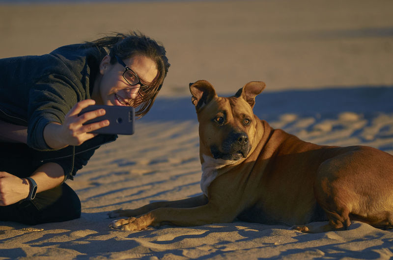 Young woman taking a photo with her smartphone with her American Staffordshire terrier dog on a beach. Dogs Happy Mediterranean  Sunlight Vacations Woman American Staffordshire Terrier Animal Themes Beach Dog Girl Mammal Pet Pitbull Relax Sand Sunrise Sunset Water