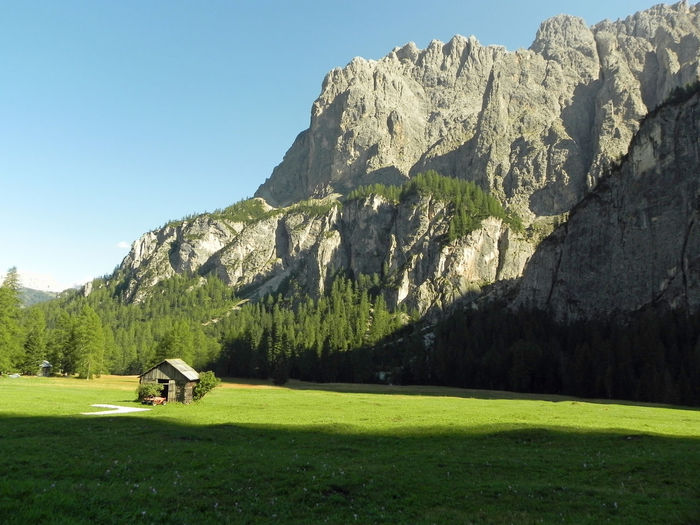 ...e in quella casetta dove... Montains    Corvara In Alta Badia EyeEm Nature Lover EyeEm Best Shots Eye4photography  EyeEmNewHere Relax Golf Course Green - Golf Course Tree Golf Golf Club Sportsman Sport Mountain Golfer Grass Pinaceae Fir Tree Needle - Plant Part Pine Wood