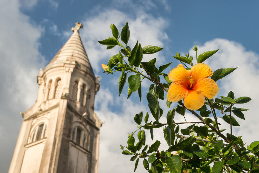 Hibiscus orange flower in front of Balata Cathedral (Sacre-Coeur de Balata) in Martinique Balata Cathedral Walls Architecture Beauty In Nature Blooming Close-up Cloud - Sky Day Flower Flower Head Fragility Freshness Growth Hibiscus Close-up Hibiscus Flower Leaf Low Angle View Nature No People Outdoors Plant Sky