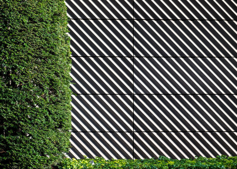 Urbanplantseries Berlin Photography Minimalist Architecture Nature On Your Doorstep Pattern, Texture, Shape And Form Architectural Detail Architectural Feature Close-up Fujix_berlin Fujixseries Grass Green Color Minimalism Minimalist Photography  Minimalistic Minimalobsession No People Outdoors Pattern Ralfpollack_fotografie Urban Plant Urbanplantseries The Graphic City