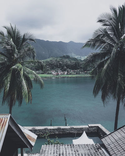 lake toba Palm Tree Tropical Climate Tree Water Plant Pool Mountain Swimming Pool Sky Day Travel Destinations Beauty In Nature Nature Tourist Resort Architecture Built Structure No People Turquoise Colored Scenics - Nature Outdoors