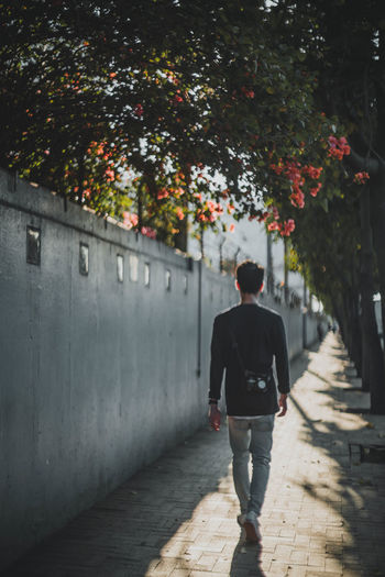 One Person Rear View Plant Full Length Tree Lifestyles Nature Walking Architecture Real People Sunlight Leisure Activity Casual Clothing Footpath Day Shadow Outdoors Direction Built Structure Streetphotography Street Daylight Suntset My Best Photo