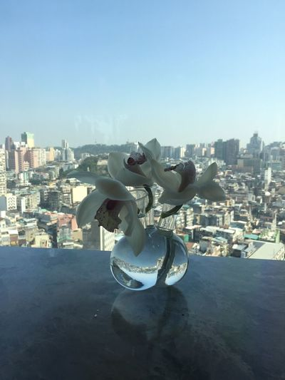 Sculpture Statue Art And Craft Built Structure Day Cityscape City