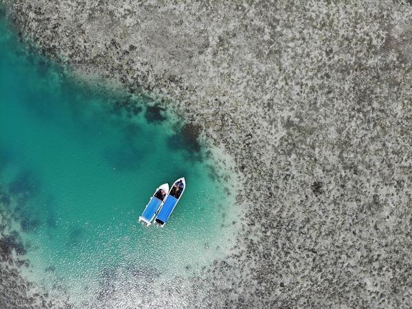 -Isolated- The tourist's boat at Bintang Biru Island. Najib Razak Bintang Biru Island Spr Pru14 Malaysia Sabah Semporna Reef Coral Clear Water Ocean Water Sea Leisure Activity Lifestyles People High Angle View Nature Sport UnderSea Vacations Underwater Holiday Aquatic Sport Swimming Real People Beauty In Nature Day Beach Outdoors Adventures In The City