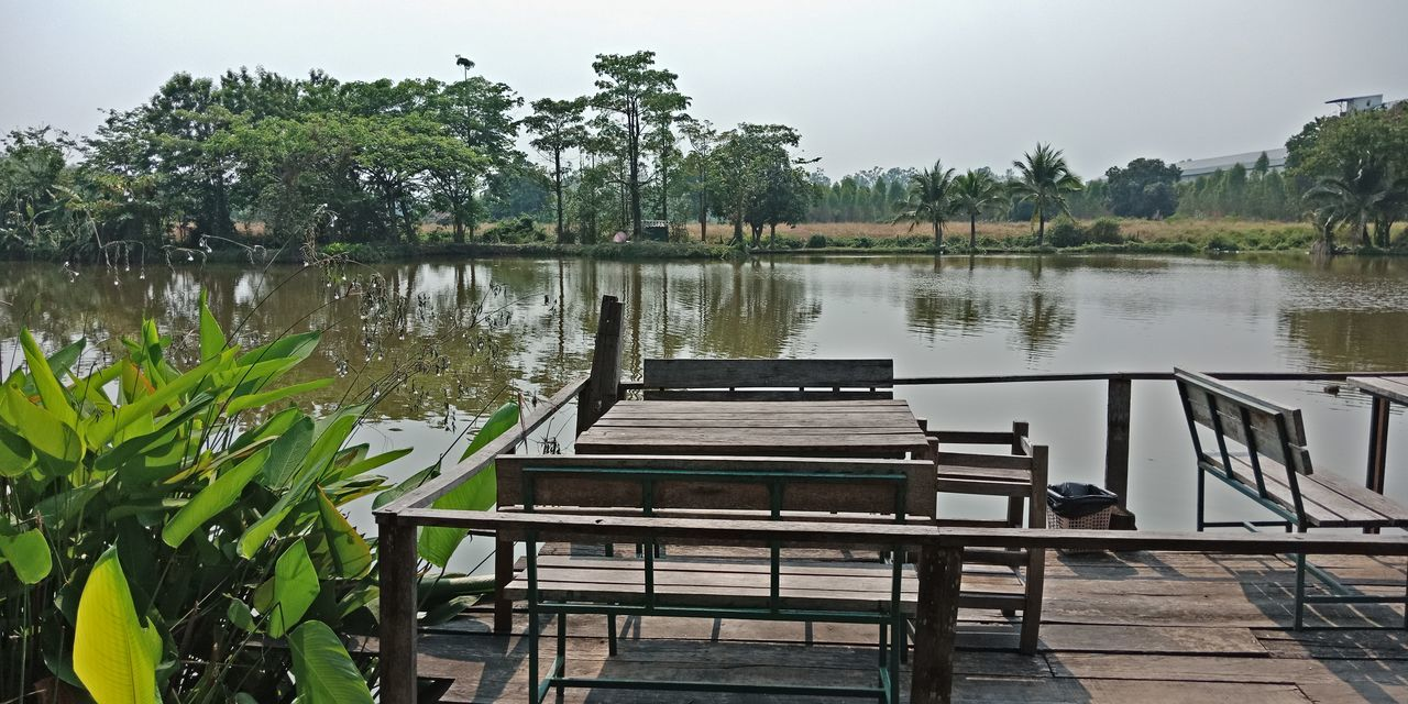 Water Tree Lake Chair Sky
