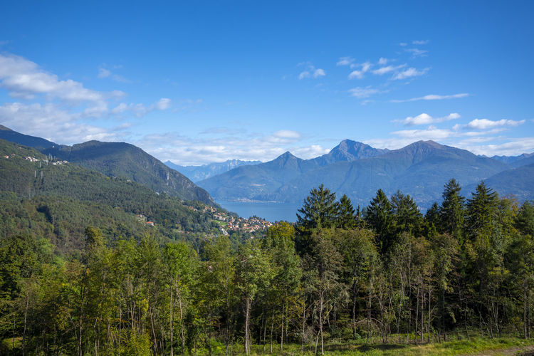 Scenic view of trees and mountains against blue sky