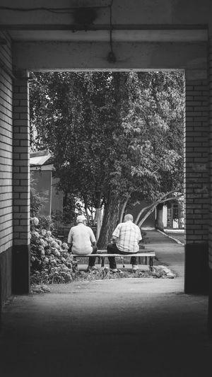 Street Photography Streetphoto_bw Men Blackandwhite Monochrome Photography Streetphotography Street Tree Architecture Building Exterior Street Scene