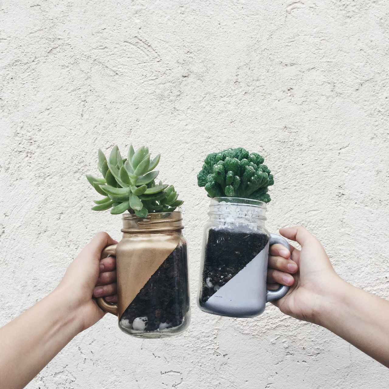Hands holding plants in glass jars