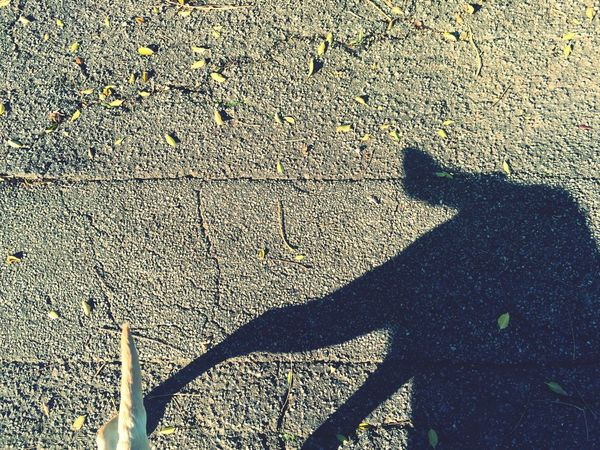 Taking the Shadow Dog for a walk. I Love My Dog Creative Light And Shadow Shadowplay Miltonbiscuit Pet Portraits
