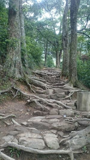 Yen Tu Mountain, Vietnam
