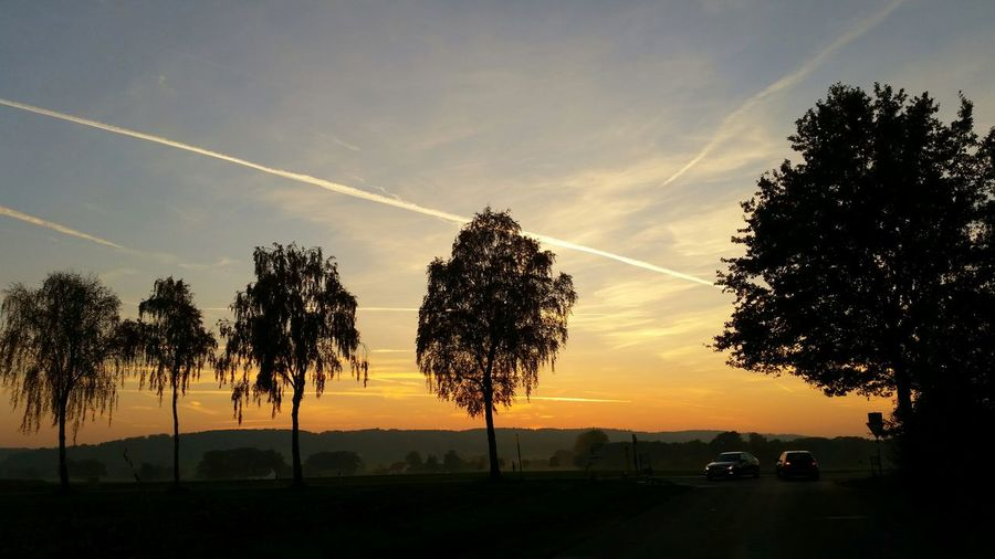 Golden Hour EyeEm Nature Lover EyeEm Best Shots Sunset Light And Shadow This Is Germany Landscapes With WhiteWall