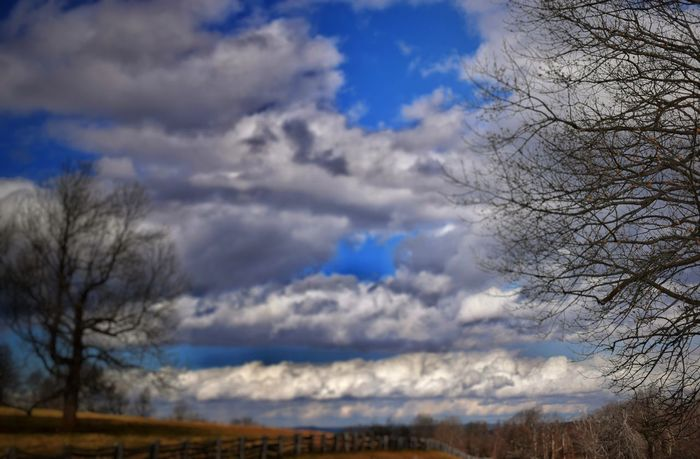 Country Girl's Paradise Winter Cold Cloud - Sky Bare Tree Winter Time EyeEm Best Shots Countryside Life Eyeem This Week God's Beauty Iseeinpictures Happigramma Thesmallestlittlethings EyeEm Gallery Country Living EyeEm EyeEm Outdoors Godsartwork Dramatic Sky Heaven Picture Perfect Cloudscape Sunbeams Heavens Dreamy