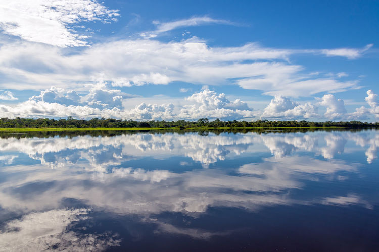Sky reflected in water on a lake in the Amazon rainforest in Peru Adventure Amazon Amazonia Background Brazil Flood Forest Green Iquitos  Iquitos, Perú Jungle Nature Nature Outdoors Paris Peru Rainforest Reflection River South America Travel Tree Tropical Vacation Water