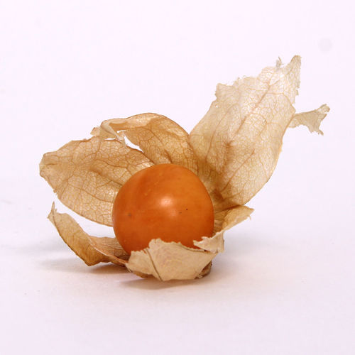 Food And Drink Healthy Eating Food Studio Shot Wellbeing Fruit White Background Freshness Close-up Indoors  No People Physalis