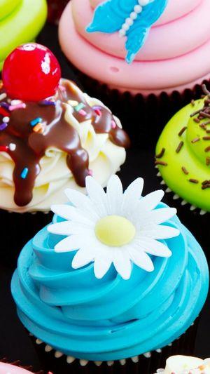 Yummy Cupcakes!!!?