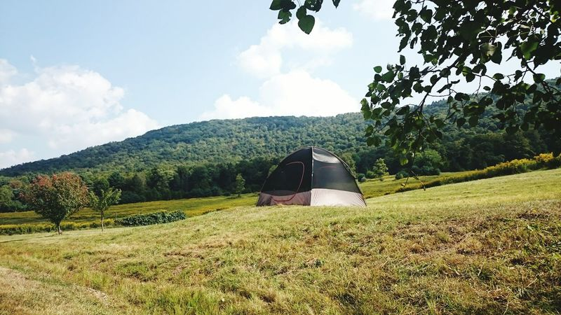 Camping Tent Camping Outdoors Outdoor Photography Summertime
