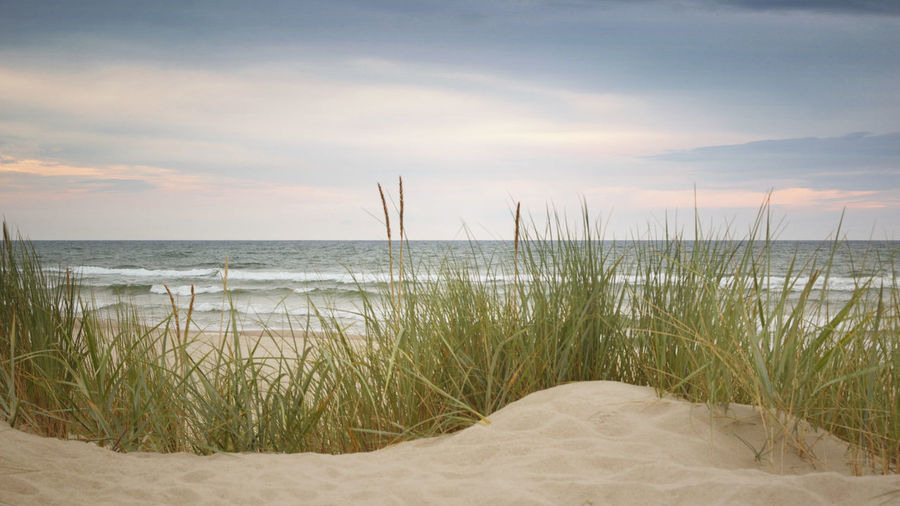 Dunes and Sea -