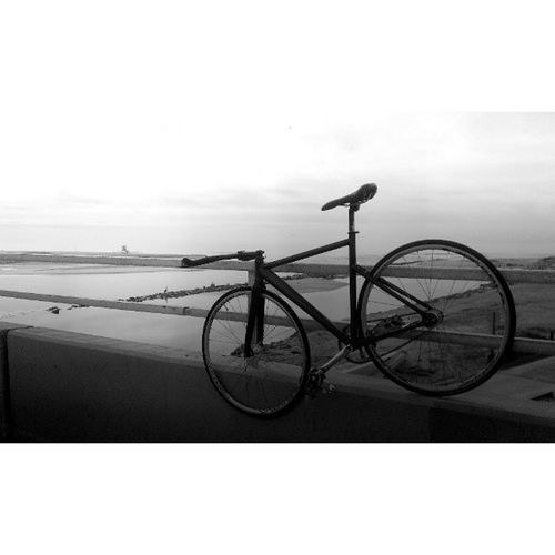 The #fixedgear #lifestyle . You gotta keep moving on. #unknownbikes #unknownps1 #leaderbikes #citygrounds #pedalroom #pursuit #track #beach #life #fixedcog Beach Life Lifestyle Track Fixedgear Pursuit  Unknownbikes Leaderbikes Citygrounds Fixedcog Pedalroom Unknownps1