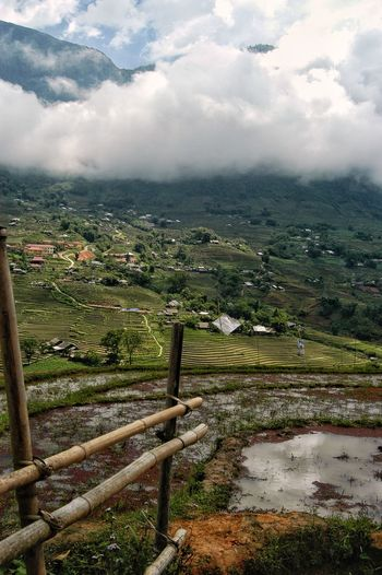 Vietnam SaPa Cloud - Sky Sky Landscape Nature Plant No People Environment Day Tranquility Beauty In Nature Tranquil Scene Tree Scenics - Nature Land Field Outdoors Growth Green Color Agriculture