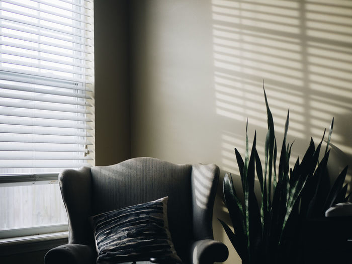 An empty chair and snake plant with afternoon light from the window. Empty Chair Home Light Blinds Home Decor Home Interior Hygge Indoors  Interior Scene Living Room Long Shadow - Shadow No People Shadows Simplicity Snake Plant Window Window Light Wingback Wingback Chair