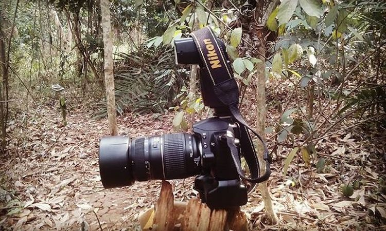 my Gear my Nikon my Hobby my Adventure Iamindonesia Iamnikon D3000 Yongnou Tamron Explore Mytrip DSLR Photographyislifee Photography Isonephotography