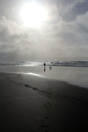 Beach Beauty In Nature Black And White Day Dog Horizon Over Water Nature One Person Outdoors People Sand Scenics Sea Sky Standing Sun Tranquility Walking On The Beach Water Wave