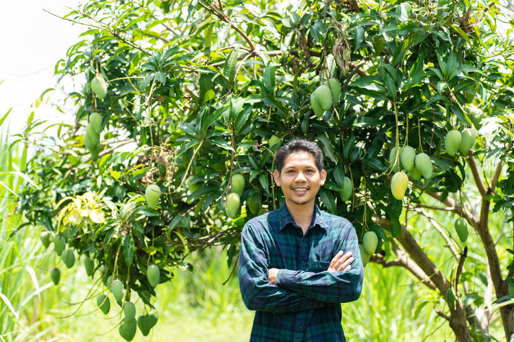 Asian farmer Farmer Mango Smart Agriculture Day Farm Food Food And Drink Front View Green Color Growth Healthy Eating Looking At Camera Nature Occupation One Person Orchard Organic Outdoors Plant Portrait Simple Living Smiling Tree Young Adult