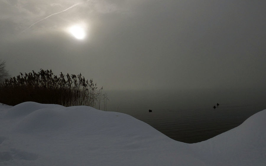 Beauty In Nature Cold Temperature Day FogyDay Lake Landscape Moon Nature No People Outdoors Scenics Sky Snow Sun Tranquil Scene Tranquility Tree Water Winter