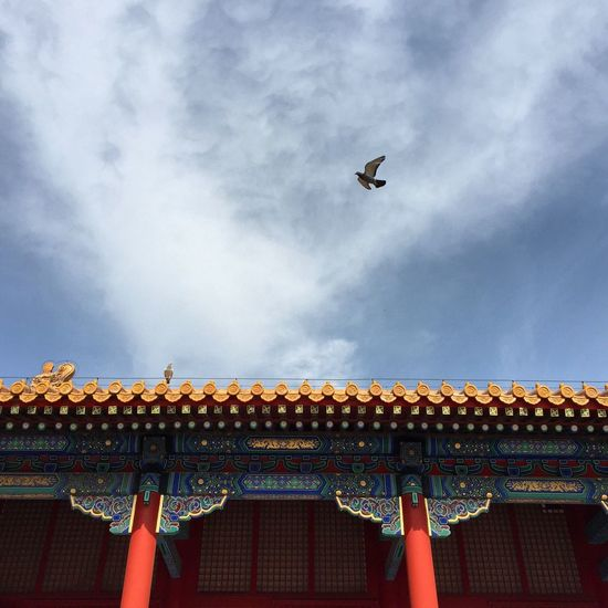 Low angle view of bird flying over traditional building against cloudy sky