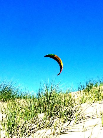 Kite Dunes Sea And Sky Sea Netherlands Summertime Beach Playing Outside