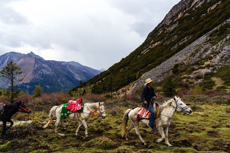 View of people riding horse in mountains against sky