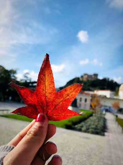 Cropped hand of woman holding maple leaf in city during autumn