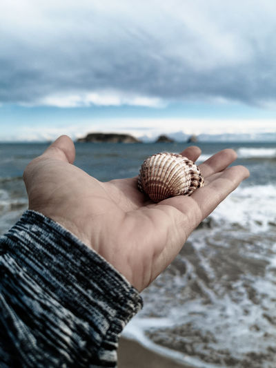 Close-up of hand holding shell on beach