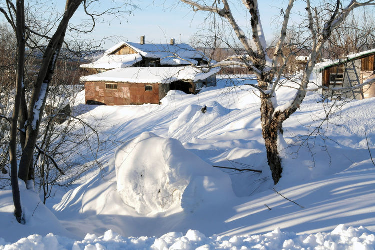 Rural landscape Architecture Cold Temperature Day Nature Rural Landscape Shadow Sky Snow Sunshine Tree White Color Winter