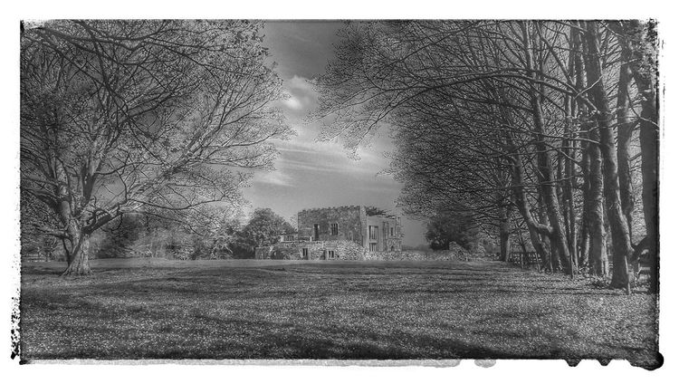 Frame It For The Love Of Black And White Amazing Place Historical Building Treetastic Shadows And Light My Country Discovering Places