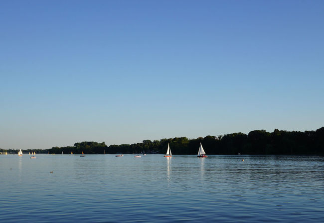 Maschsee Blue Boat Clear Sky Copy Space Evening Light Germany Hannover Lake Leisure Activity Maschsee Nature Outdoors Sailing Summer Water