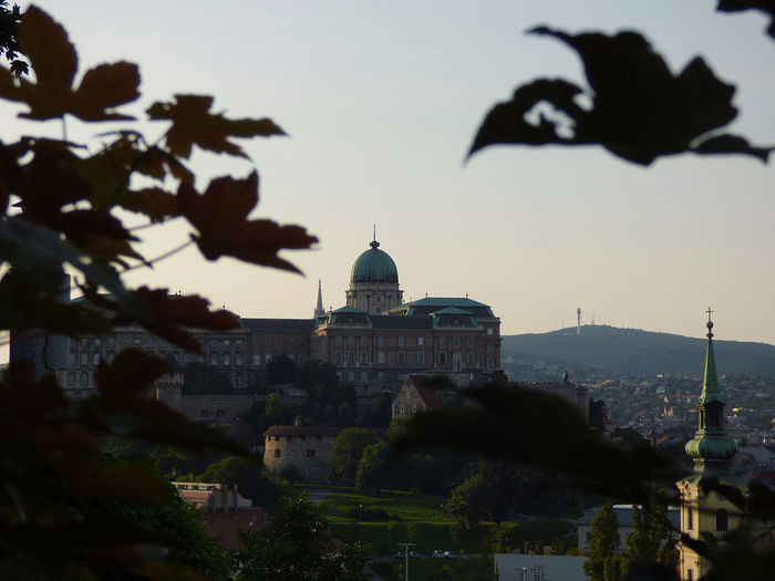 Buda castle against clear sky